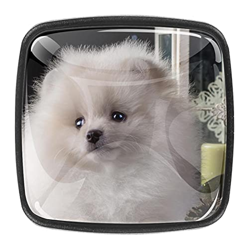 Tiradores cajón cristal 4 piezas perillas gabinete,cachorro blanco ,para puerta cocina escritorio tocador