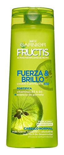 Garnier Fructis Fuerza y Brillo 2en1 Champú - 360 ml