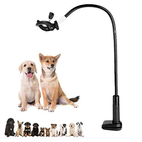 Supporto per asciugacapelli per Animali Domestici, Supporto per asciugacapelli per Tavolo da toelettatura per Cani da Compagnia a Mani libere, Morsetto da Tavolo su Supporto per acconciatura