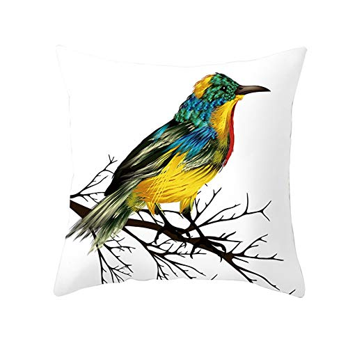 Fundas de cojín Fundas de Almohada decorativas Color del pájaro Terciopelo Suave Cuadrado Fundas de Cojines para Sala de Estar Sofá Cama Coche Decor Throw Pillow Case V1467 Pillowcase+core,60X60cm