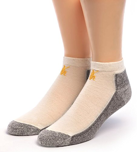 Warrior Alpaca Socks - Men's Sport Mini Crew, Alpaca Wool Socks - Anklet with Terry lined Cushion Footbed