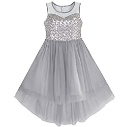 Gray With Sequin & Mesh Princess Tulle Dress