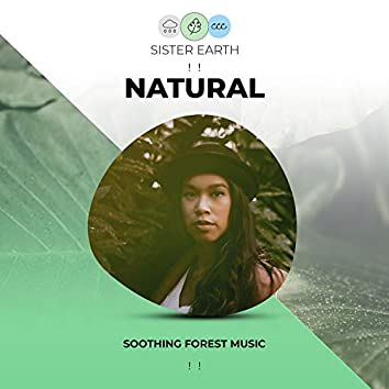 ! ! Soothing Natural Forest Music ! !