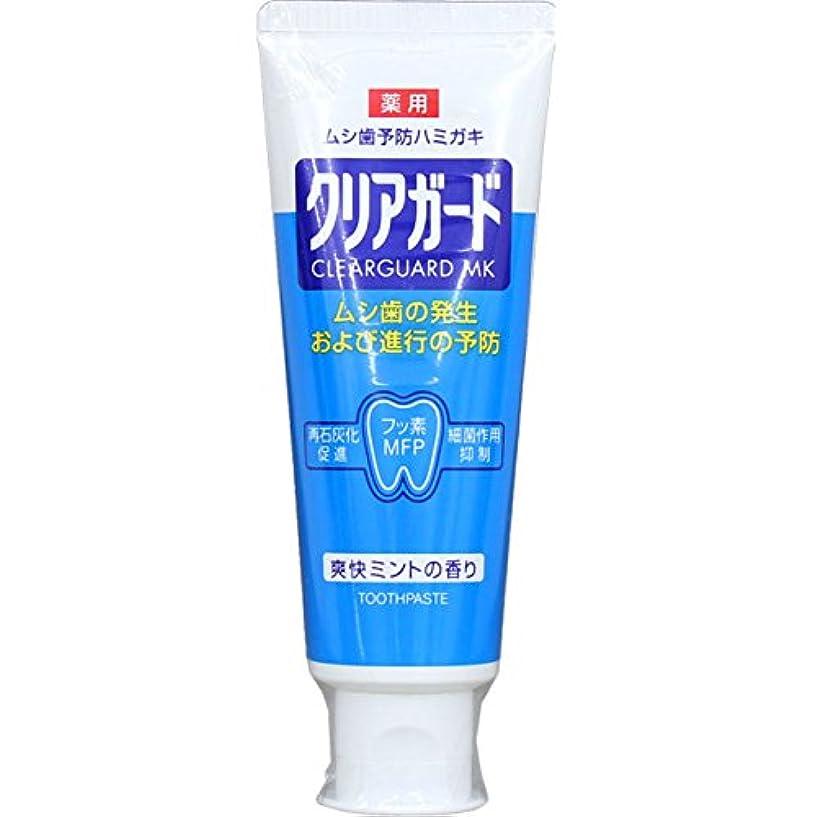 内陸ナンセンス虐殺薬用クリアガード 160g (医薬部外品)
