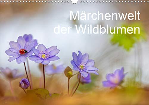 Märchenwelt der Wildblumen (Wandkalender 2021 DIN A3 quer)