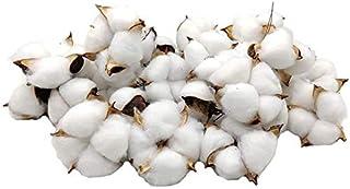 家族の装飾のための木製のボールの白い綿の生地の枝のピッキングリースは家族の装飾のための贈り物30個乾燥