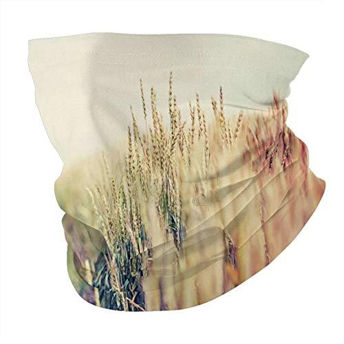 Pastoral de trigo sin costuras Multifuncional Headwear Variedad de la Cabeza Bufanda de diseño personalizado capucha de deportes al aire libre