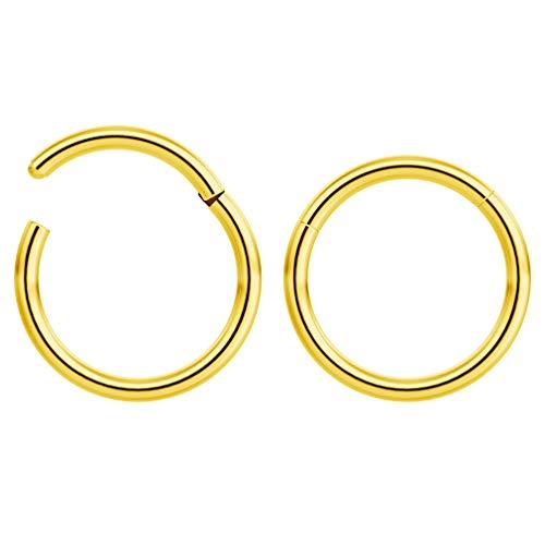 2 x 1 mm goud geanodiseerd chirurgisch staal klikring segment neus helix cartilage tragus piercing 8 mm