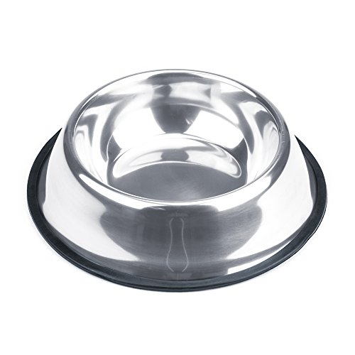 Pig Water Bowl That Won't Tip Over