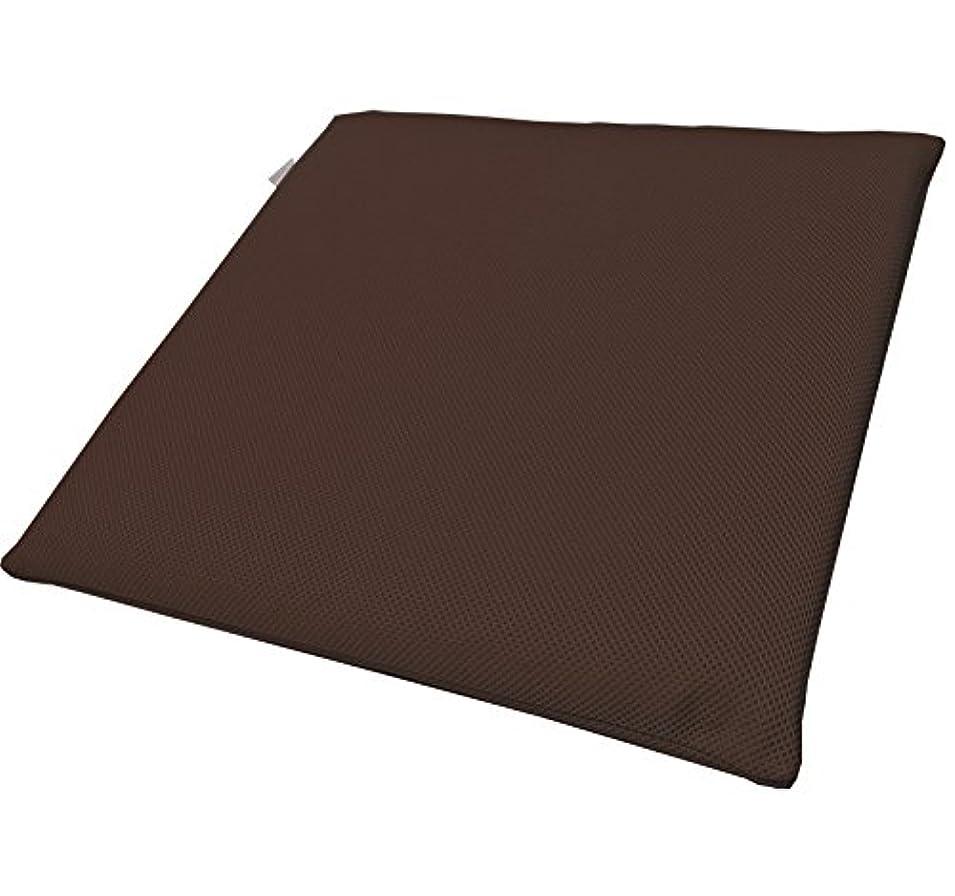 仕様サリー石油東洋紡日本製ブレスエアーシートクッション(中材4cmハードタイプ) ブラウン