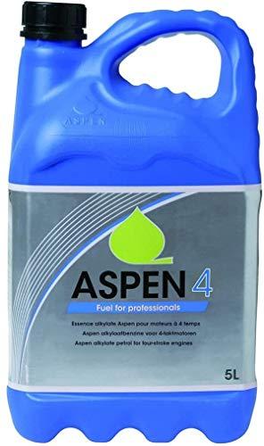 ASPEN 4T Sonderkraftstoff 5-Liter Kanister