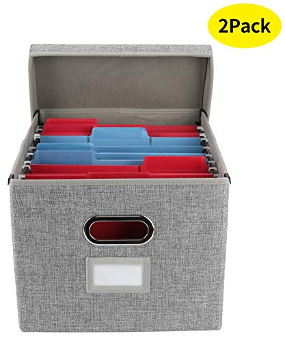 EasyPAG Collapsible File Storage Box with Lid Desk Filing Organizer Bins with Inner Metal Brackets for Letter and Legal Size Hanging File Folder,2 Pack,Gray