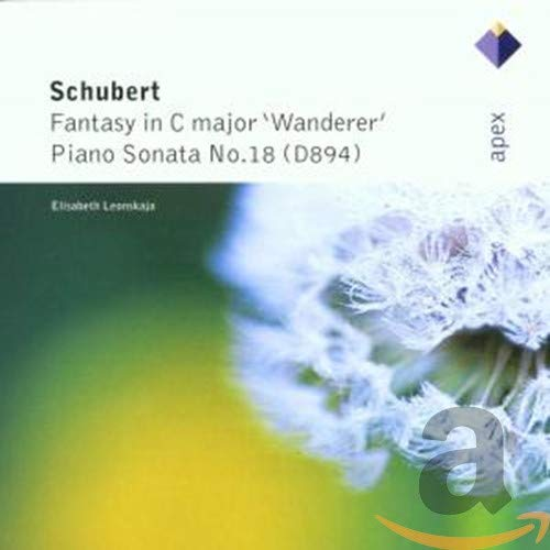 Wanderer-Fantasie/Klaviersonate 18