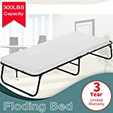 Best Cots - Dkeli Folding Bed Guest Rollaway Bed Frame Review