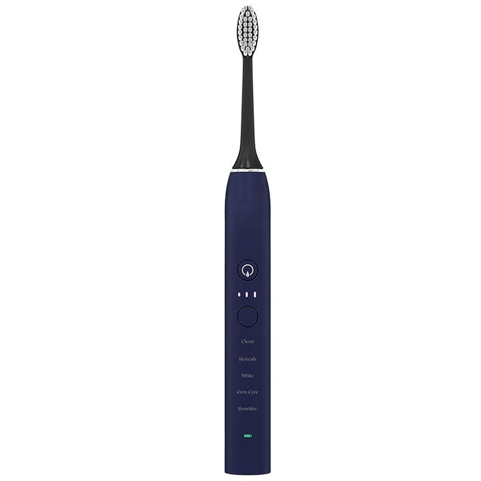 最も早い個人的にに沿って自動歯ブラシ USB充電式ソフトヘア電動歯ブラシ大人 (色 : 青, サイズ : Free size)