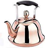 LHJCN Hervidor de té con silbido de Acero Inoxidable 304,...