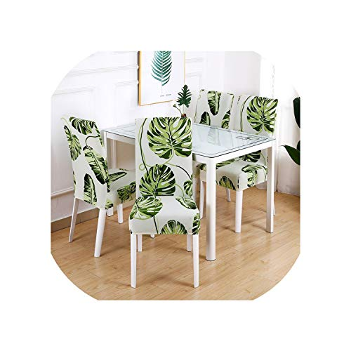 Price comparison product image Rchhy Solid Color Wedding Chair Covers Spandex for Dining Room Restaurant seat Cover Chair slipcovers for Office Hotel Banquet Chair, Color 5, 1 Piece