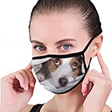 Funny Dog Lying Bed Jack Russell Washable Reusable Mouth Mask Cotton Anti Dust Half Face Mouth Mask For Men Women Dustproof With Adjustable Ear Loops