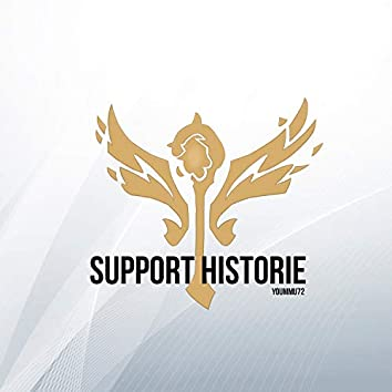 Support Historie
