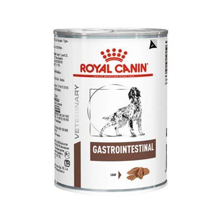 umido 6 scatolette Royal canin Gastro intestinal 400 gr Veterinary Diet Cibo Cani con disturbi intestinali Piu Uno snak masticabile vegetale Forma spazzolino igiene dei Denti