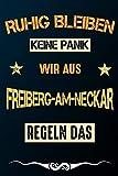 Ruhig bleiben keine Panik wir aus FREIBERG-AM-NECKAR regeln das: Notizbuch   Journal   Tagebuch   Linierte Seite (German Edition)