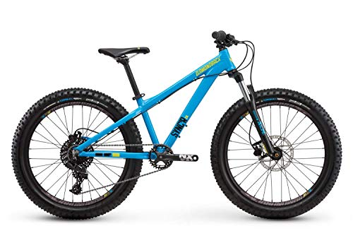 Diamondback Sync'r 24 Youth Hardtail Mountain Bike