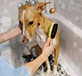 Zoom IMG-1 pecute spazzola doppia per cani
