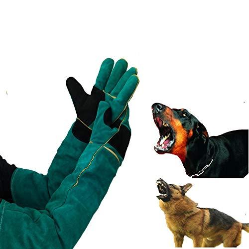 TONGS Handschuhe Zum Katze Hund Vogel Schlange Papagei Eidechse,Anti-Biss/Kratzer Tiere Schutz Handschuhe,Haustier Ausbildung Sicher Handschuhe Sicher Dauerhaft/Grün / L60cm