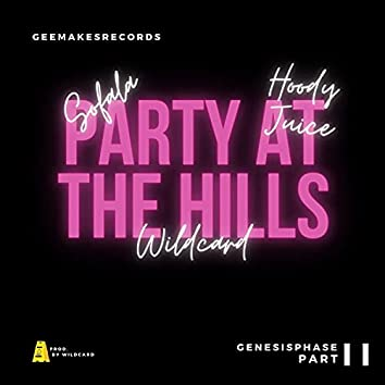Party At The Hills (feat. Wildcard, YTN Sofala & Hoody Juice)