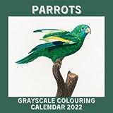 Grayscale Colouring Calendar 2022: Parrots November 2021 - December 2022 Colouring Book Mini Art Calendar Monthly Planner Parrot illustrations by Francois Levaillant
