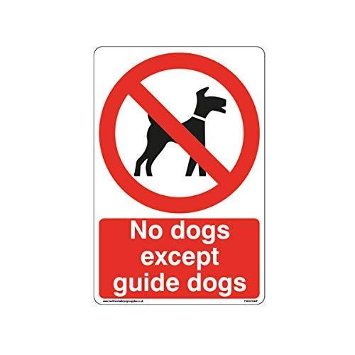 Geen Honden Behalve Gids Honden Tekenen - Hond Verbod Tekenen Stickers Zelfklevende Vinyl Waarschuwing Stickers voor Eigendom voor Werkplek voor Kantoor, Thuis,200mm x 300mm