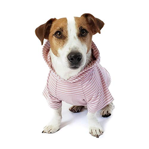 DJANGO Dog Hoodie and Super Soft and Stretchy...
