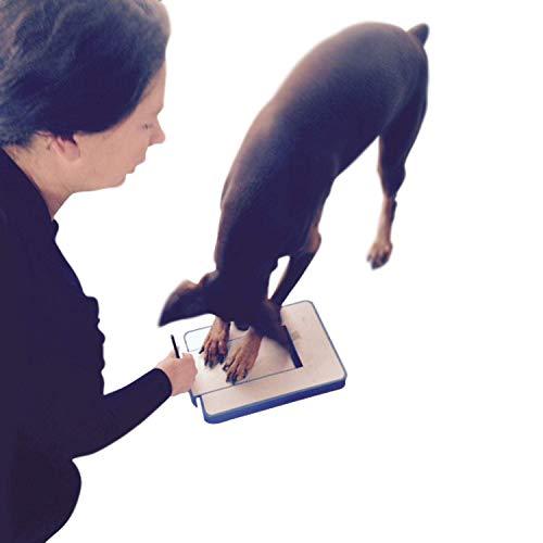 DiggerDog Nail File Stress Free Alternative to Dog Nail Clippers and Dog Nail Grinders (Blue)