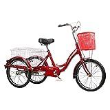 ZJZ Bici Adulta de la Rueda de Trike Tres de Las Ruedas de 20 Pulgadas, para la recreación del Ejercicio de Las Compras
