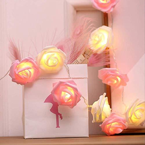 Lichtketting met roze LED-verlichting voor kamerdecoratie, 5 m lang, 20 lampjes Pink + Warm White