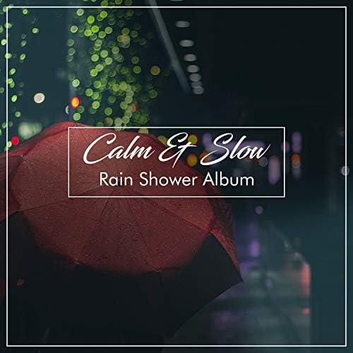 Ambient Nature White Noise, ASMR Rain Sounds, Rain Hard