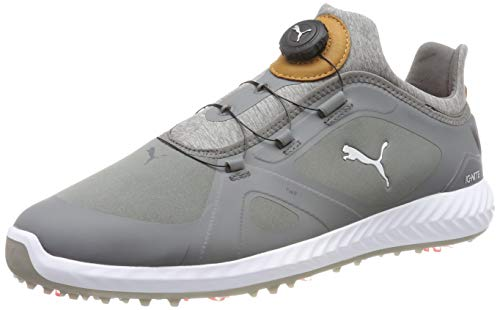 PUMA Ignite PWRADAPT Disc, Chaussures de Golf Homme, Gris Quiet Shade 03, 42 EU