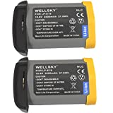 WELLSKY LP-E19 LP-E4N LP-E4 [ 2個セット ] 完全 互換バッテリー [ 純正 充電器 バッテリーチャージャー で充電可能 残量表示可能 純正品と同じよう使用可能 ] キヤノン 一眼レフ イオス EOS 1D Mark III / EOS 1Ds Mark III / EOS 1D Mark IV / EOS 1D X / EOS 1D C / EOS 1D X Mark II / EOS-1D X Mark III