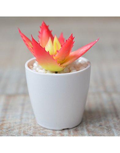 Home & Mas Kunstmatige cactusplant met bloempot van keramiek, wit voor decoratie