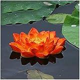 ZHEYANG Budas Grandes De Jardin Adornos Jardin Exterior Decoraciones de jardín Lotus Piscina Estanque Bañera Flotante Decoración de jardín Estera para el hogar Jardín Estanque Acuario Fairy Garde