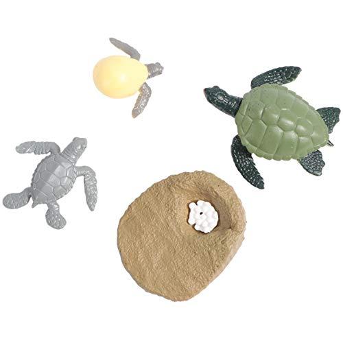 STOBOK 1 Unidades Tortuga Ciclo de Vida Figuras PVC Realista Mar Animal Ciclo de Vida Figuras Juguetes Educativos Juguetes Para Niños Niños