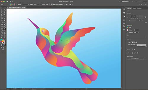 Adobe Illustrator| Vector Graphic Design Software | 12-Month Subscription with Auto-Renewal, Billed Monthly, PC/Mac