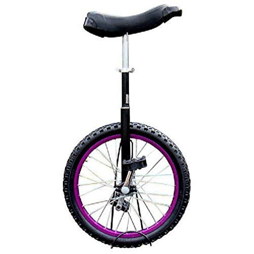 ZSH-dlc Freestyle Einrad 16/18/20/24 Zoll Einzelrad Kinder Erwachsene Höhenverstellbar Laufrads Übung, Bester Geburtstag, 4 Farben (Color : Purple, Size : 24 inch)