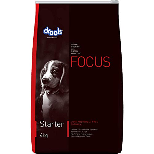 Drools Focus Starter Super Premium Dog Food, 4kg