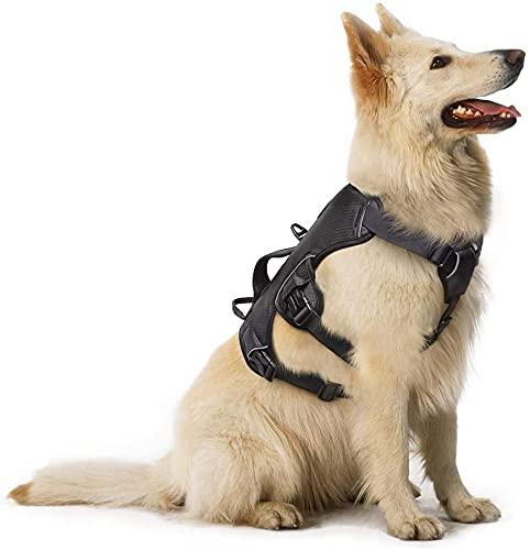 rabbitgoo No-Pull Hundegeschirr mit Tragegriff für Hunde Brustgeschirr Reflektierendes Geschirr Verstellbare Hundeweste für Outdoor, Training Sicher Kontrolle Gepolstert,XL Schwarz