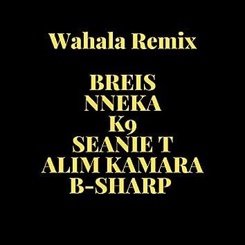 Wahala (feat. Nneka, K9, Seanie T, B-Sharp & Alim Kamara)