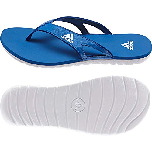 adidas Calo 5 GR M, Herren Riemchensandalen für den Strand & Badeschuhe - - BROYAL/White/Croyal 5