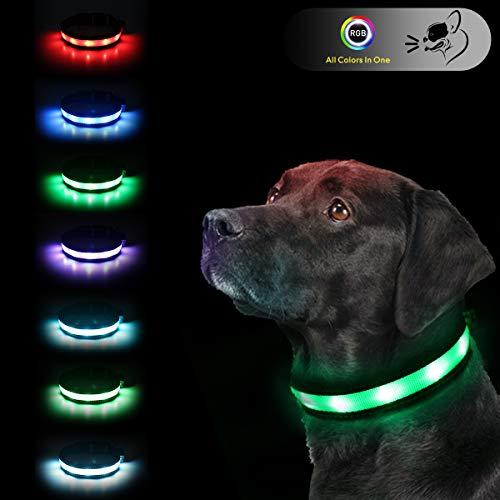 LED Safety Dog Collars