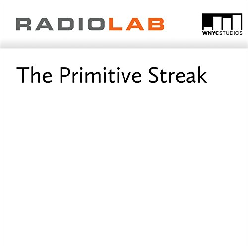 The Primitive Streak  audiobook cover art