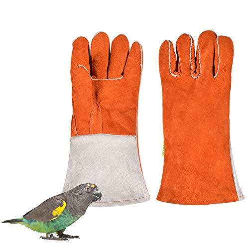 LY-Rack Papagei Anti Bite Handschuhe, Robuste, Kratz- und bissfeste Lederschutzhandschuhe für Hund Katze Vogel Schlange Eidechse Wildtiere Handschuhe
